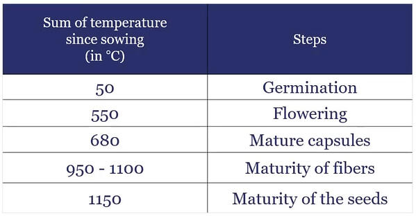temperature of sowing flax linen